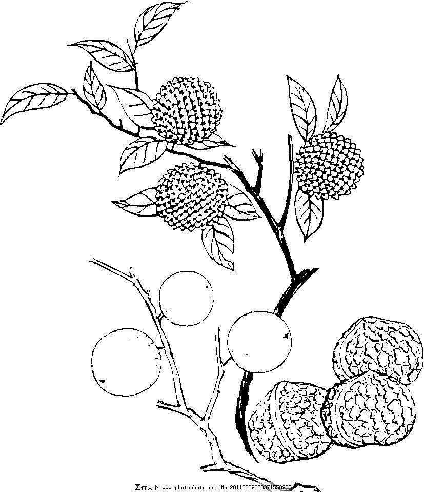 中国风纹样图案 中国传统图案 中国设计 传统花纹 中国图案 底纹花纹