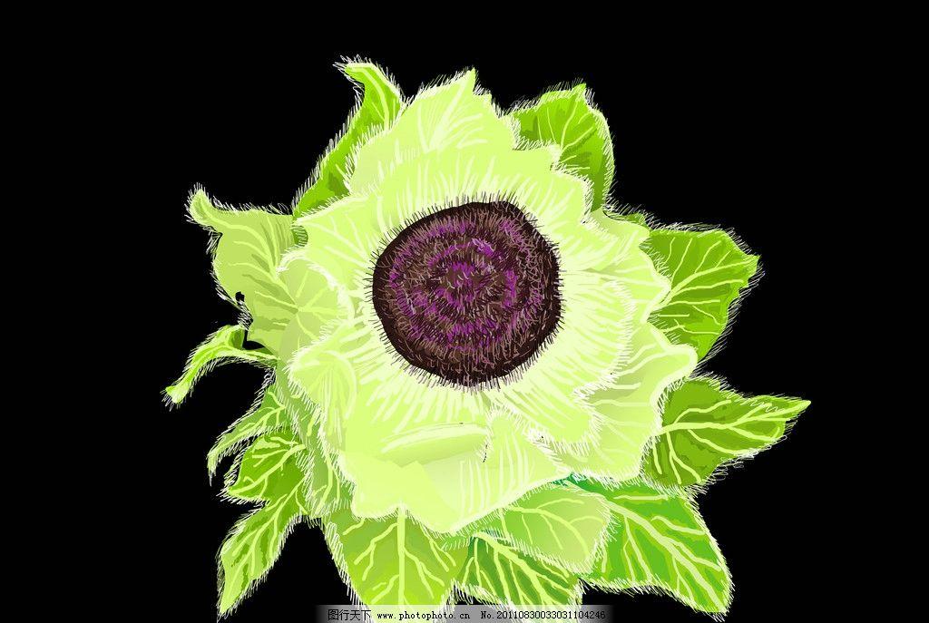 雪莲花 手绘 花卉 植被 绿色 淡绿 雅绿 褐色 psd分层素材 源文件 40