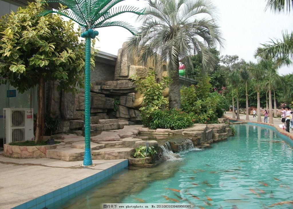 动物园风景一角图片
