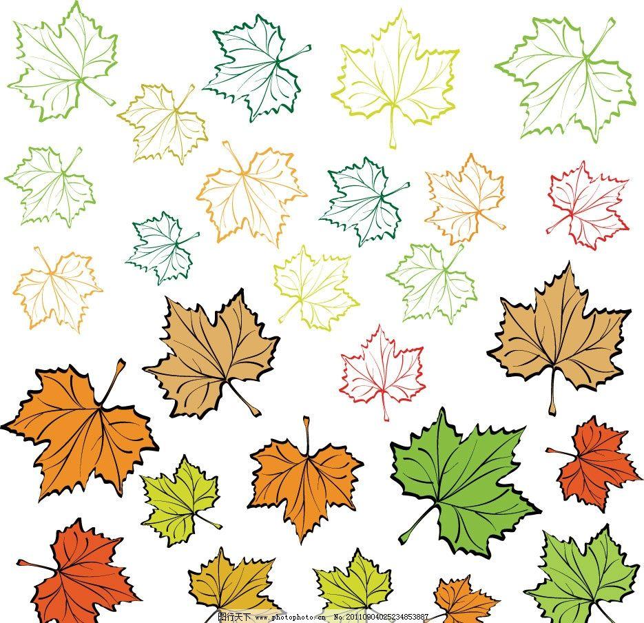 手绘枫叶树叶 手绘 枫叶 红叶 树叶 绿叶 矢量 植物主题 树木树叶