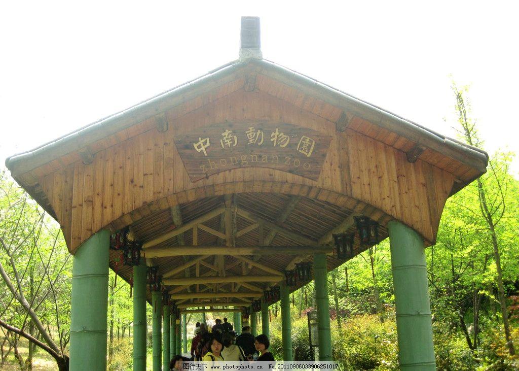 中南动物园 浙江 安吉 绿色植物 国内旅游 摄影