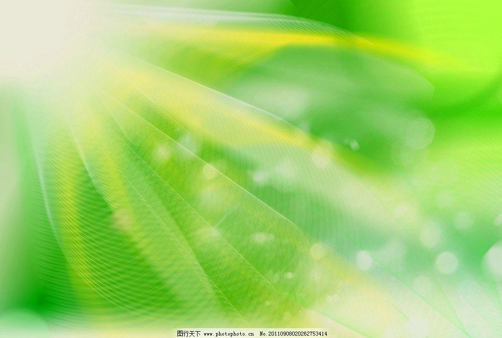 背景 壁纸 绿色 绿叶 树叶 植物 桌面 1024_690