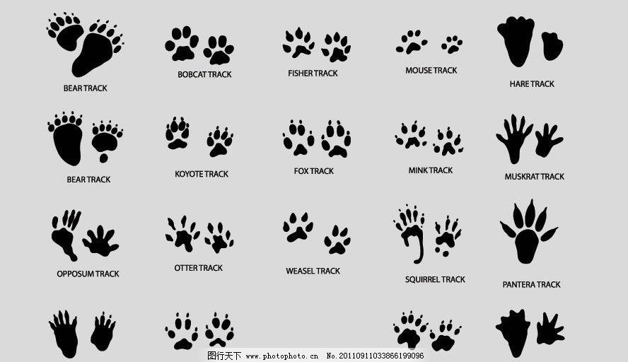 花样动物脚印剪影 脚印 动物 剪影 矢量其他 矢量素材 其他矢量 矢量