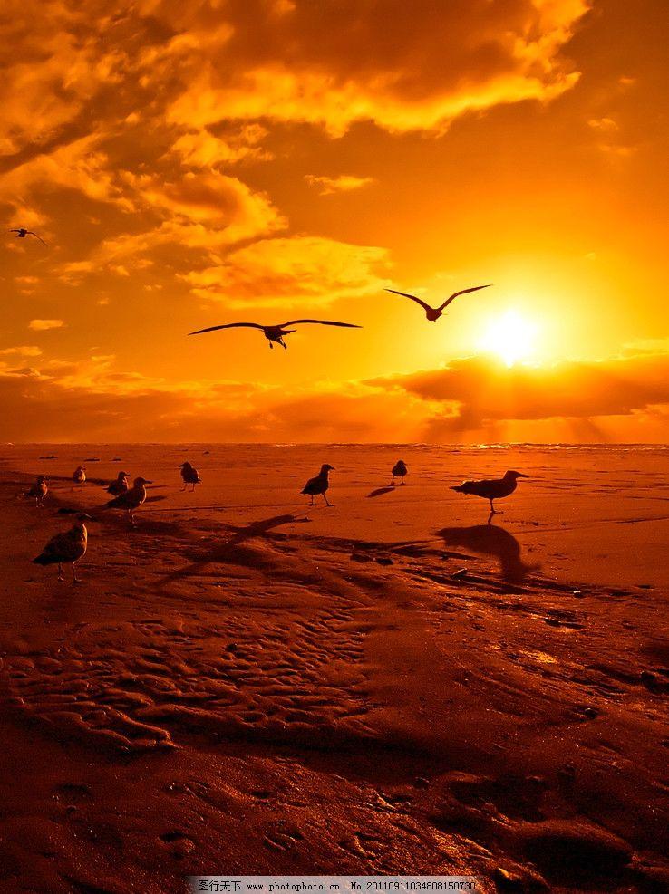 彩海边风景画简单_背景 壁纸 风景 天空 桌面 738_987 竖版 竖屏 手机
