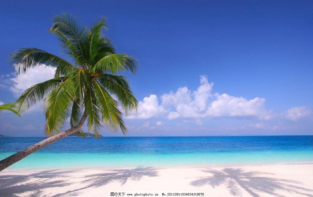椰子树 蓝天 白云 沙滩 海边美景 海岸 度假 大海 蔚蓝 风景