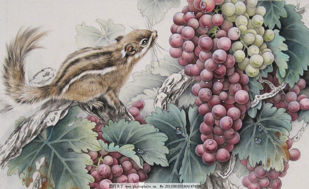國畫 工筆畫 工筆 工筆葡萄 松鼠 繪畫書法 文化藝術 設計 180dpi jpg