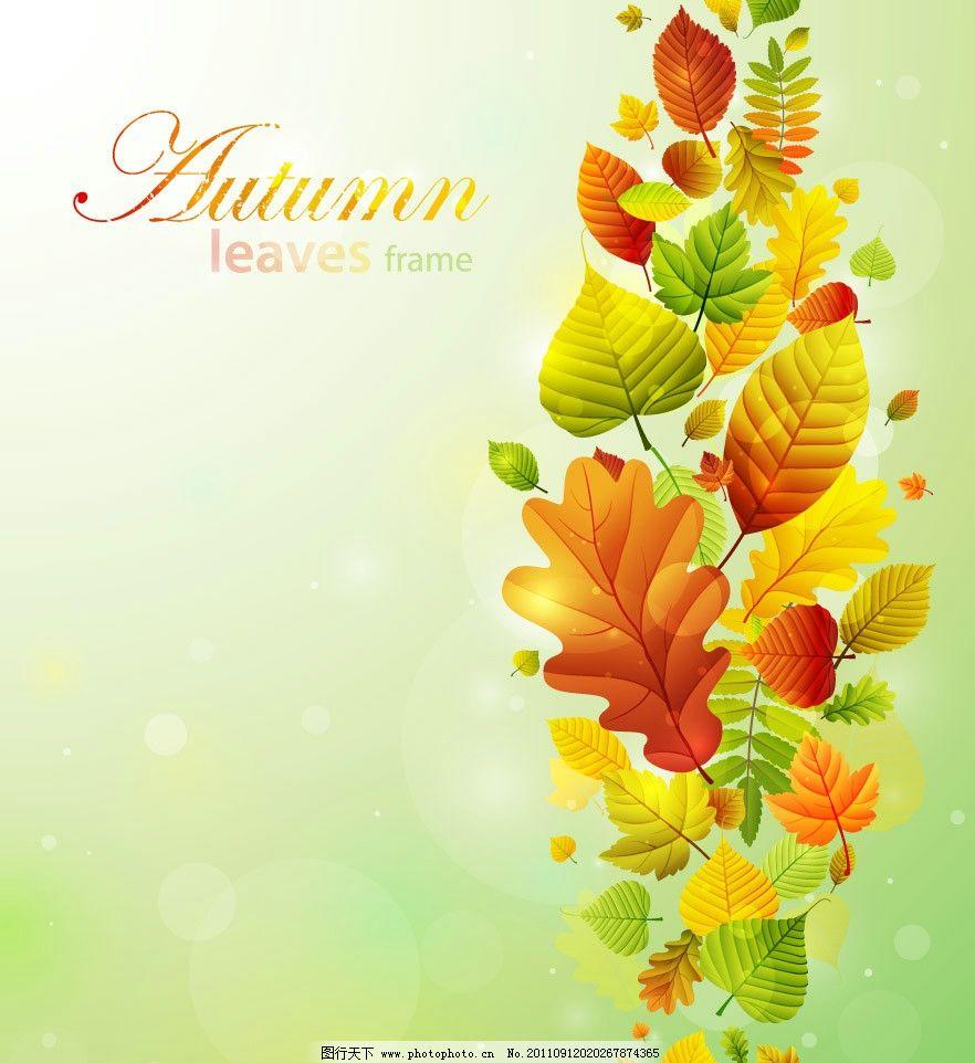 秋天枫叶树叶梦幻背景图片