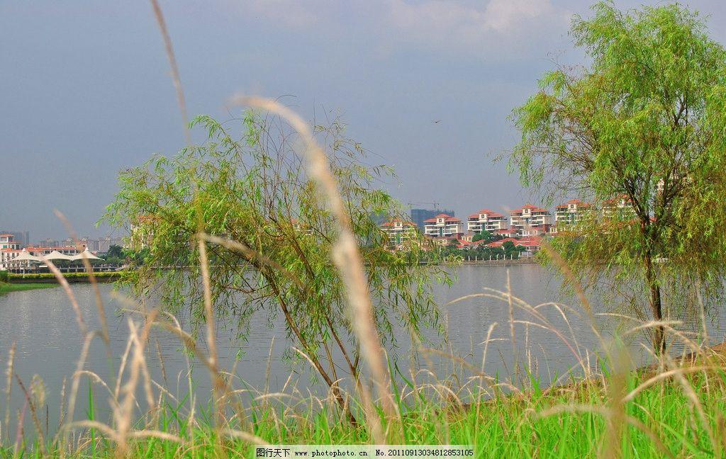 东莞 东莞风景 水濂山水库 别墅 房地产 美丽家园 湖边花园 自然风景
