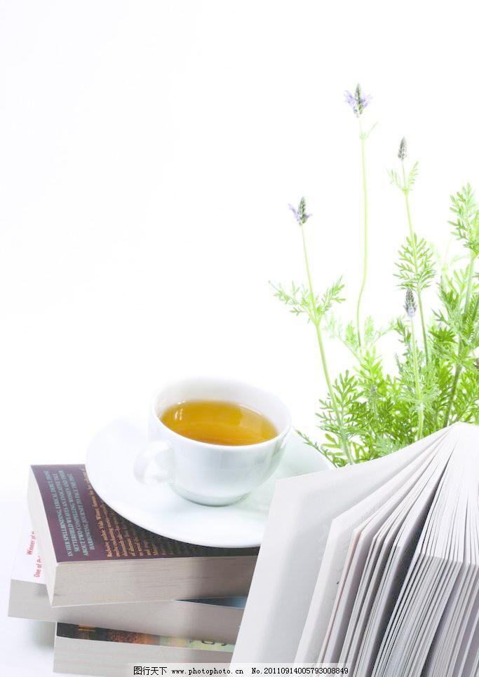 jpg 杯子 笔记本 茶 茶水 盘子 摄影 生活百科 书 植物 书 茶图片素材