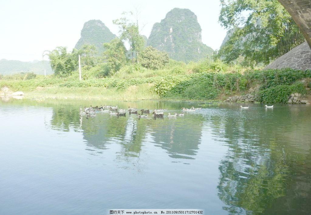 桂林山水画图片