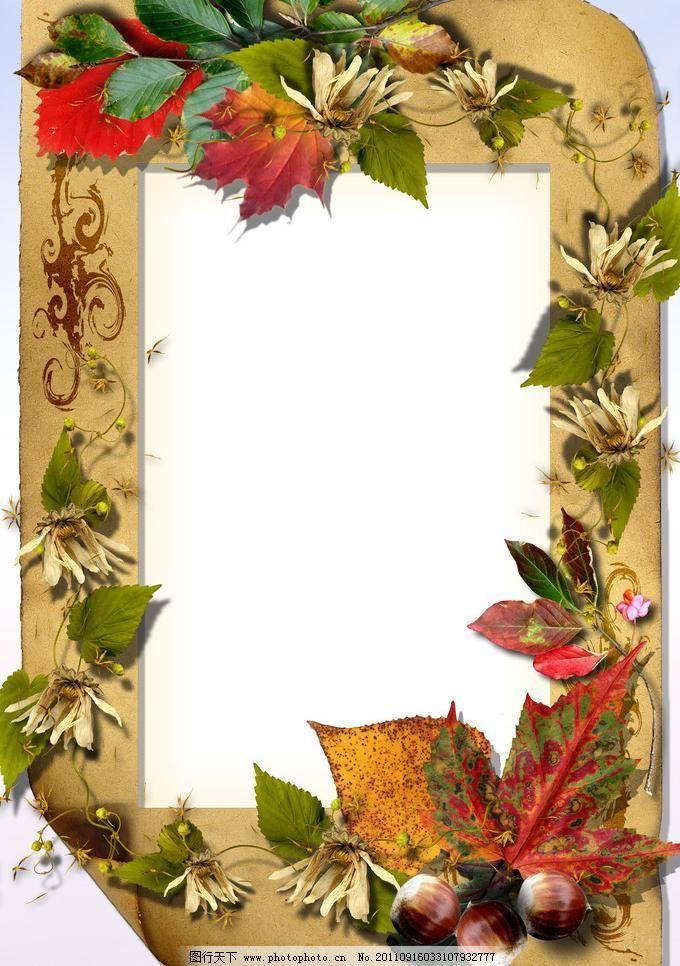 相框 背景边框 背景素材 边框相框 底纹边框 枫叶 花边 花纹