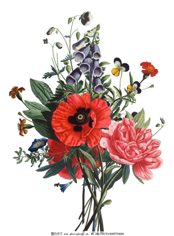 手绘花卉 手绘花纹花卉