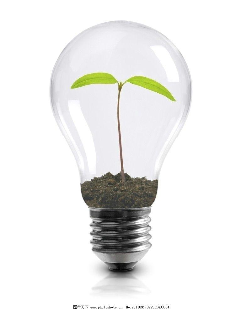 电灯泡 树苗 环保 电灯胆 灯泡 广告设计 设计 jpg