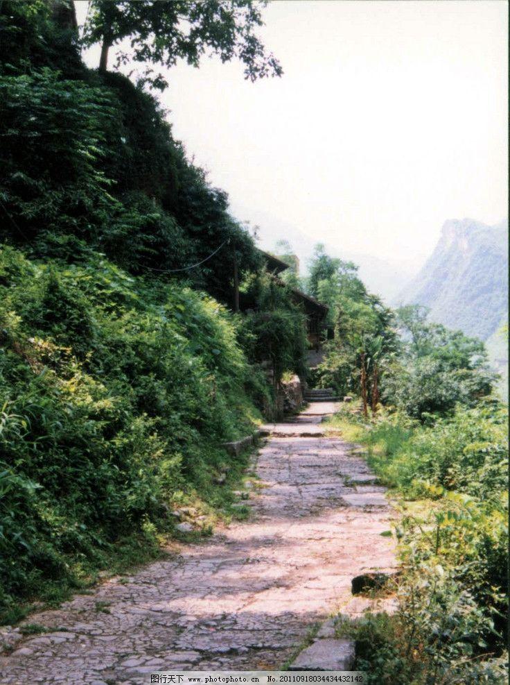 山间小路 大山 小路 阳光 绿树成荫 山水风景 自然景观 摄影 300dpi