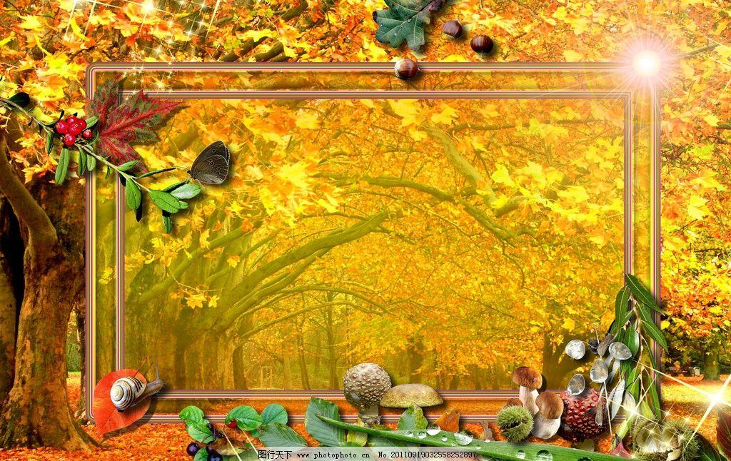 相册 相框 背景 影楼相册模板 人物相册模板 秋天风景 枫树 枫叶 边框