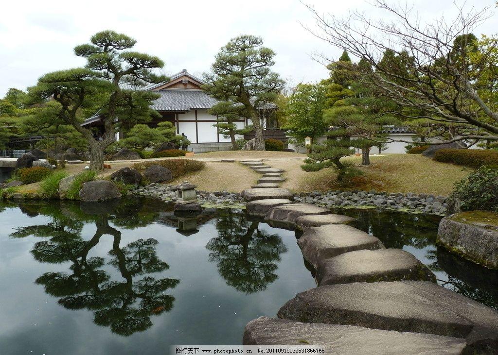日式花园 公园 日式园林 水池 石头 松树 园林设计 树 灌木 草地 古