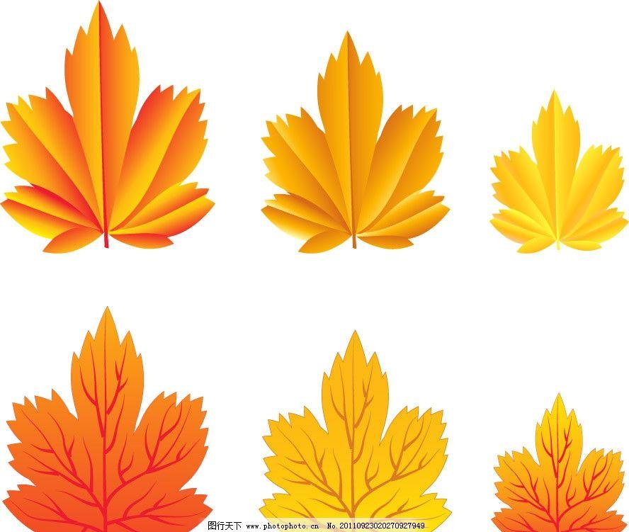 枫叶简单大方手绘边框