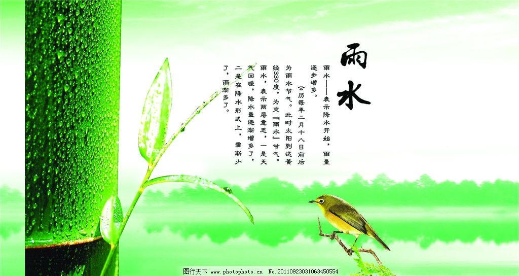 雨水 竹子 其他设计 广告设计 矢量 cdr