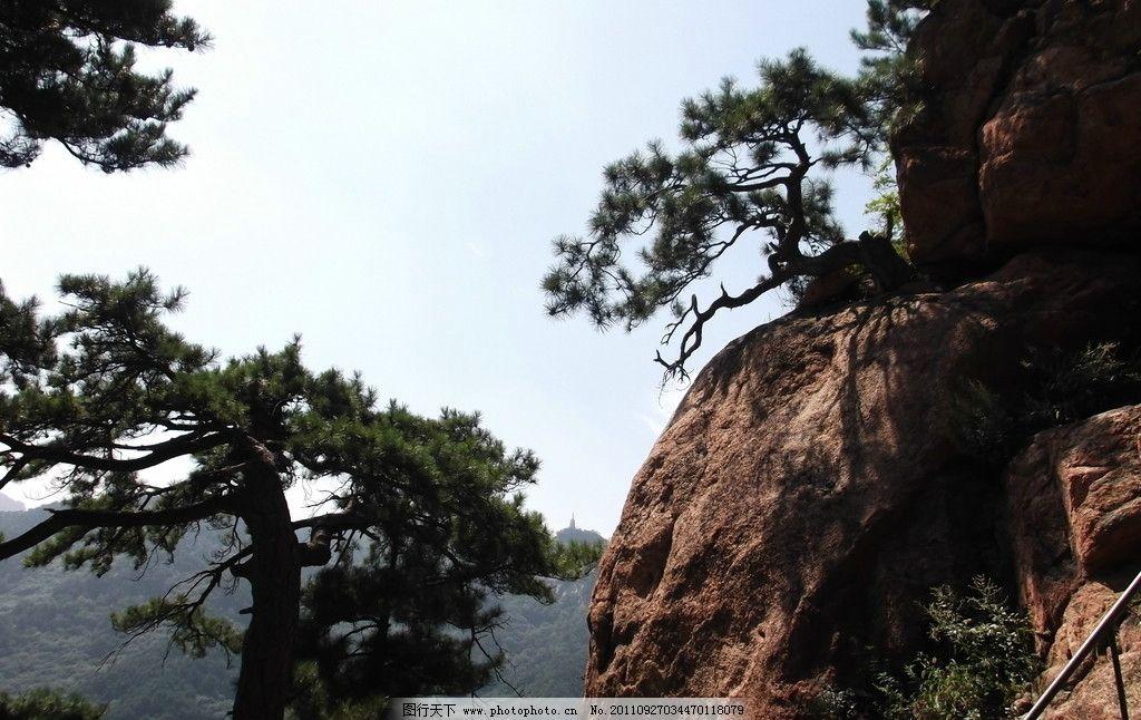 千山 旅游 摄影 山水 松树 山水风景 自然景观 72dpi jpg
