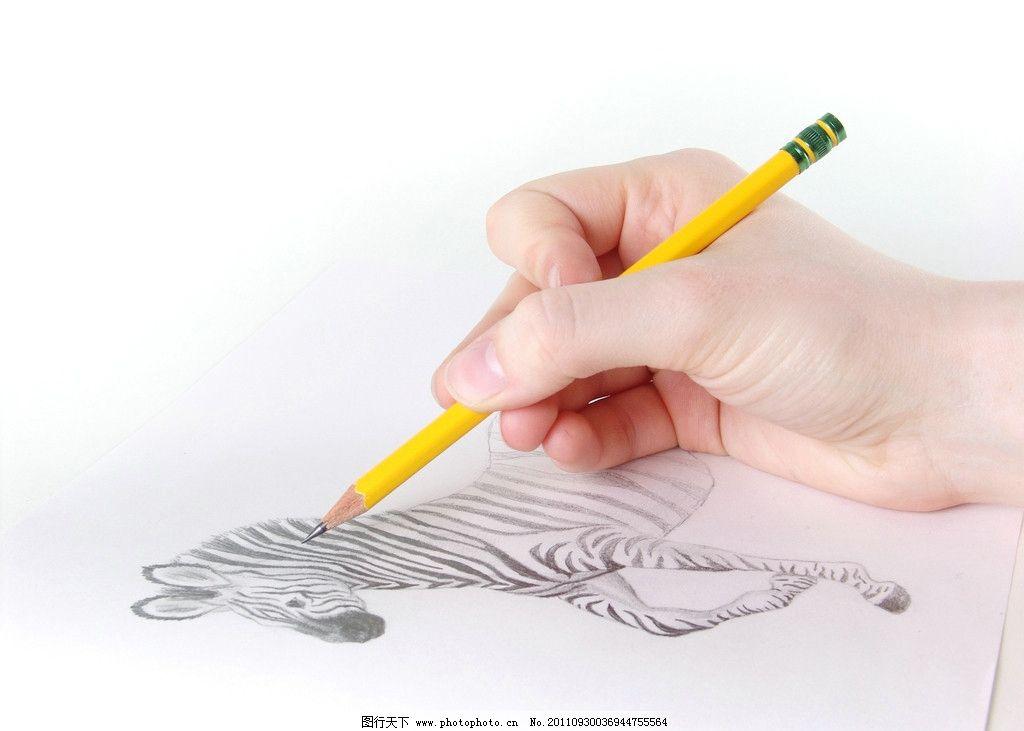 美丽的手画动物图片